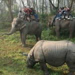 Kathmandu Cultural Tour & Chitwan Safari