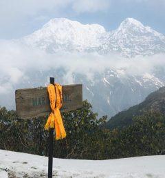 Mardi Himal  treks  Annapurna