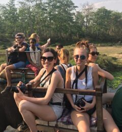 Jungle safari in chitawan